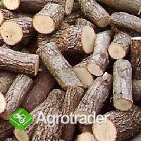Ukraina.Drewno opalowe, kora drzewna.Cena 15 zl/m3 - zdjęcie 5