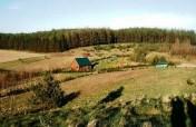 Działka rolna z własnym lasem w Skorzewie