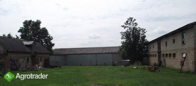 Sprzedam gospodarstwo rolne, Waliska, pow. miński. - zdjęcie 3