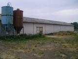 ferma drobiu Kostrzyn Wlkp