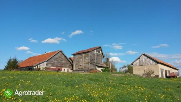 Gospodarstwo rolne - zdjęcie 6
