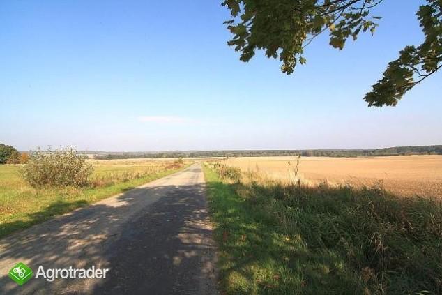 Grunty rolne, V i VI kl, koło Sycowa (dolnośląskie) - zdjęcie 5