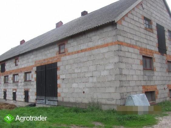 Gospodarstwo rolne, ziemia i budynki na sprzedaż Izbica Kujawska - zdjęcie 3