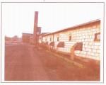 kurnik-pomieszczenie produkcyjne