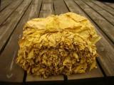 Tytoń liście do palenia VIRGINIA BURLEY KRAKÓW