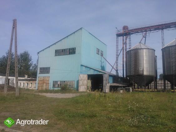 Sprzedam gospodarstwo rolne-budynki o profilu zbożowo-hodowlanym - zdjęcie 1