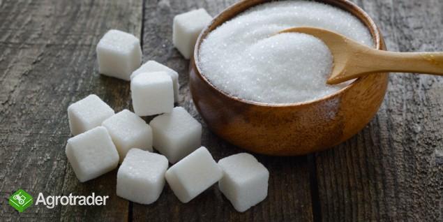 Sprzedamy cukier z Ukrainy