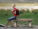 Ukraina.Sprzedam firme - biuro podrozy, operator turystyczny z sedziba