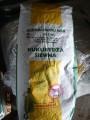 Kukurydza siewna kwalifikowana wysyłka wiele odmian