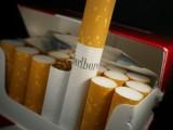 Tani tytoń! Promocja! Tyton Korsarz Route Viceroy LD RGD Camel PS LM