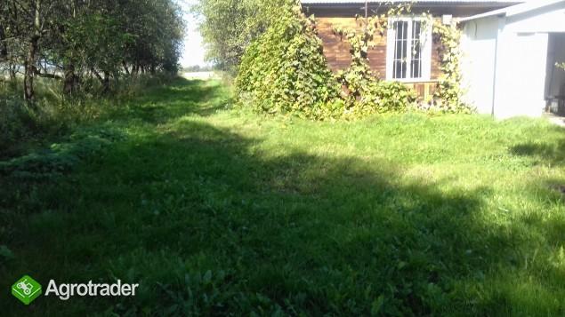 Sprzedam gospodarstwo rolne Gołębie (okolice Nasielska) - zdjęcie 1