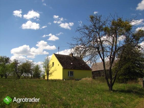Gospodarstwo Nowe Prusy - cicha przystań, 1.6 ha - zdjęcie 7