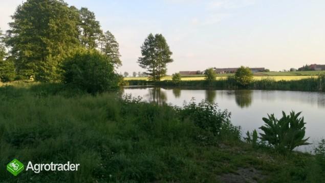 Sprzedam gospodarstwo/Siedlisko 13,48 ha ze stawem - zdjęcie 3