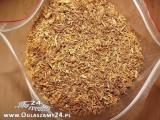 tytoń, szybka dostawa 70 zł