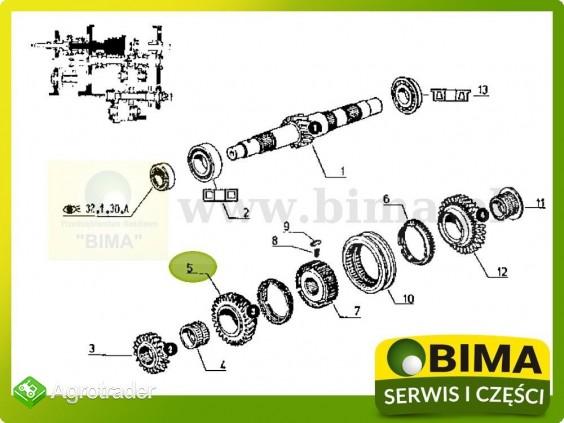 Używane koło zębate 3 biegu z29 Renault CLAAS 110-54 - zdjęcie 2