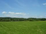 16 ha w okolicy Karpacza