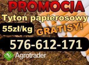 TANI TYTON 65zł KG-ODBIOR OSOBISTY,WYSYŁKA tyton   tabaka nitki