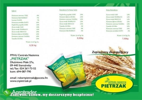 Ekologiczne mieszanki traw, Nasiona