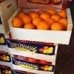 Pomarańcze-Hurt-Sprzedaż