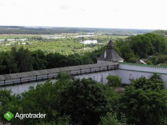 Drewno z Ukrainy.Cena 15 zl/m3 - zdjęcie 3