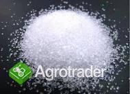 Biały cukier trzcinowy
