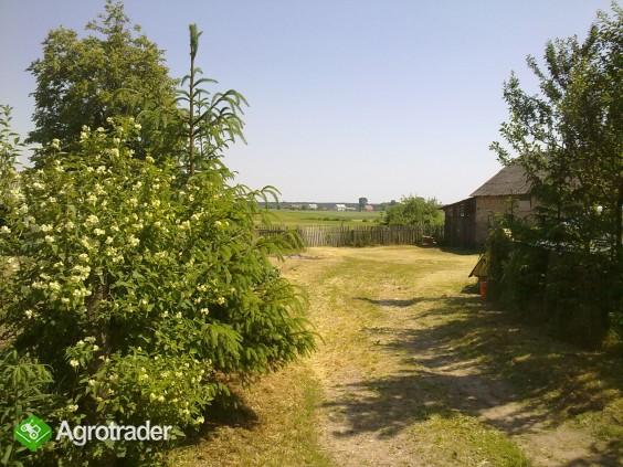 Siedlisko, dom na wsi blisko Jeziora Rajgrodzkiego, Podlasie - zdjęcie 4